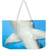 Whitetip Reef Shark, Kimbe Bay, Papua Weekender Tote Bag