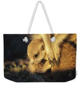 A Baby Meerkat Snuggles Weekender Tote Bag