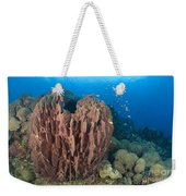 A Barrel Sponge Attached To A Reef Weekender Tote Bag
