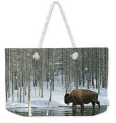A Bison Stands In A Cold  Stream Weekender Tote Bag