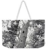 A Black And White View Of The Interior Weekender Tote Bag