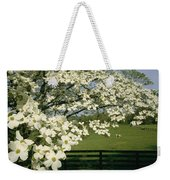 A Blossoming Dogwood Tree In Virginia Weekender Tote Bag