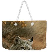 A Bobcat Weekender Tote Bag