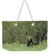 A Brown Bear In Tall Grasses Weekender Tote Bag