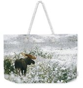 A Bull Moose On A Snow Covered Hillside Weekender Tote Bag
