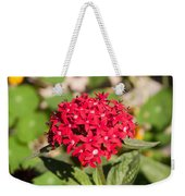 A Bunch Of Small Red Flowers Weekender Tote Bag