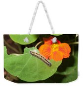 A Caterpillar Eating The Leaves Of A Plant With A Beautiful Orange Flower Weekender Tote Bag