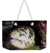 A Chain Moray Eel Peers Out Of Its Hole Weekender Tote Bag