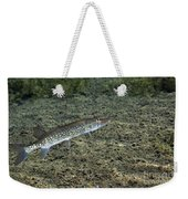 A Chain Pickerel Wimming The River Weekender Tote Bag by Terry Moore