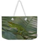 A Chameleon With Yellow Eyes Balances Weekender Tote Bag