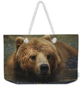 A Close View Of A Captive Kodiak Bear Weekender Tote Bag