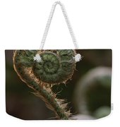 A Close View Of A Fiddlehead Fern Frond Weekender Tote Bag