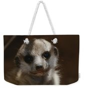 A Close View Of A Meerkat Suricata Weekender Tote Bag