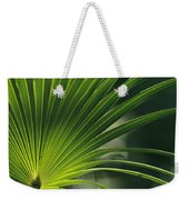 A Close View Of A Palm Frond Weekender Tote Bag