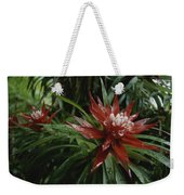 A Close View Of A Tropical, Red Flower Weekender Tote Bag