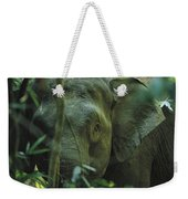 A Close View Of An Asian Elephant Weekender Tote Bag