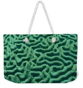 A Close View Of Bright Green Brain Weekender Tote Bag