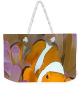 A Clown Anemonefish In A Purple Weekender Tote Bag