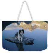 A Collie Perches Itself On A Rock Weekender Tote Bag