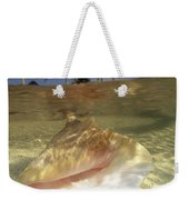 A Conch Shell Rests Beneath The Clear Weekender Tote Bag