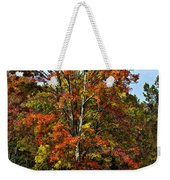 A Country Place Painted Weekender Tote Bag