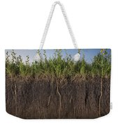 A Cross Section Of A Sunflower Root Weekender Tote Bag