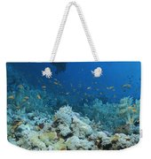 A Diver Explores Coral And Marine Life Weekender Tote Bag