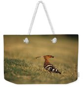 A Eurasian Hoopoe With An Insect Weekender Tote Bag