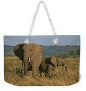 A Female Elephant With Her Baby Weekender Tote Bag