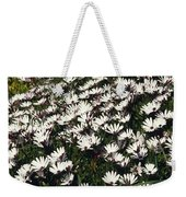 A Field Of Prolofic White Daisy Flowers Weekender Tote Bag