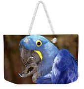 A Foot In Its Mouth Weekender Tote Bag