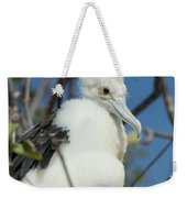 A Frigatebird Sitting In A Nest Weekender Tote Bag