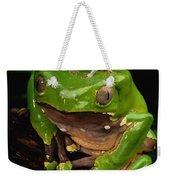 A Frog Phylomedusa Bicolor Perched Weekender Tote Bag