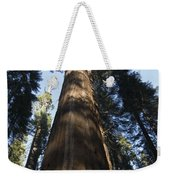 A Giant Redwood In The Mariposa Grove Weekender Tote Bag