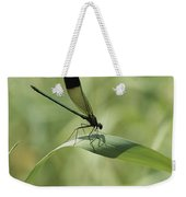 A Graceful Dragonfly Sitting On A Blade Weekender Tote Bag