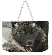 A Gray Wolf, Canis Lupus, Growls Weekender Tote Bag