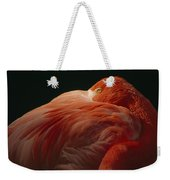 A Greater Flamingo With Its Head Weekender Tote Bag