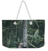 A Grizzly Bear Clings To A Fir Tree Weekender Tote Bag