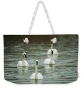 A Group Of Swans Swimming On A County Weekender Tote Bag