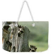 A Group Of Young Racoons Peer Weekender Tote Bag