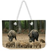 A Group Of Young Wild Boars Nose Weekender Tote Bag