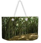 A Grove Of Banyan Trees Send Airborn Weekender Tote Bag