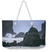 A Gull Sits On A Rock At Cannon Beach Weekender Tote Bag