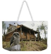 A Hawk Owl Sits On A Stump Near A Log Weekender Tote Bag