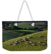 A Herd Of Cattle Graze On Rolling Green Weekender Tote Bag