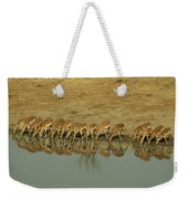 A Herd Of Impala Drinking At A Watering Weekender Tote Bag