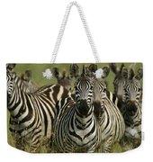 A Herd Of Zebras Standing Alert Weekender Tote Bag