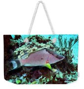 A Hogfish Swimming Above A Coral Reef Weekender Tote Bag