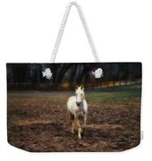 A Horse Of Course Weekender Tote Bag