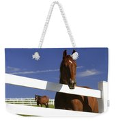 A Horse Peers Over A Fence Weekender Tote Bag